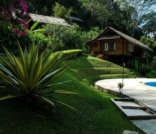 All Things You Must Know About Landscaping DIY
