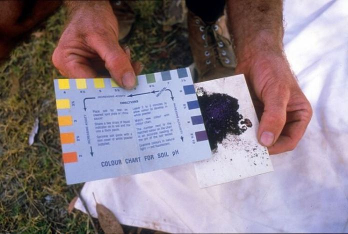 How To Get An Accurate Soil Test