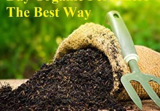 Buy Organic Fertilizers- The Best Way