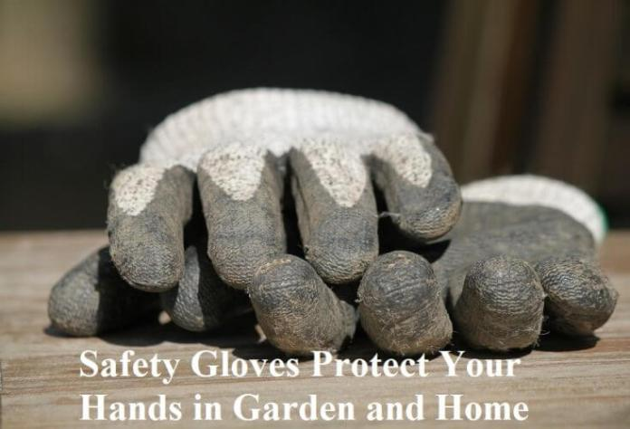 Safety Gloves Protect Your Hands in Garden and Home