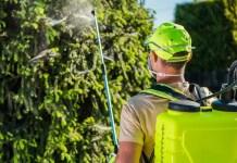 Herbicides: Preemergent or Postemergent?
