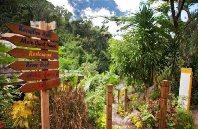 Botanical Gardens In Ocho Rios Jamaica Gardens Nursery