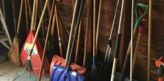 Most Landscaping Tools that you Must Have