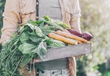 10 Mistakes to Avoid Next Gardening Season