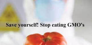 Save yourself! Stop eating GMO's