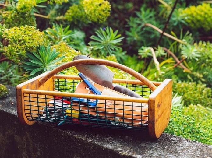Best Useful Hand Gardening Tools