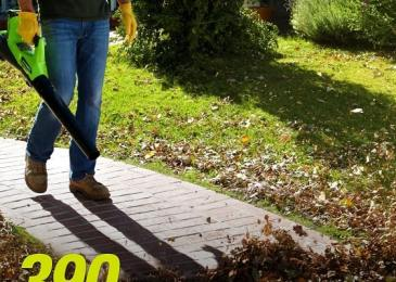 Superior Lawn Grooming With Leaf Blower