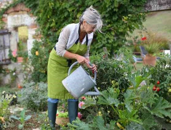 Top Gardening Gifts for Mom
