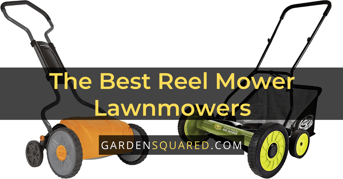 Reel Mower Lawnmower Reviews