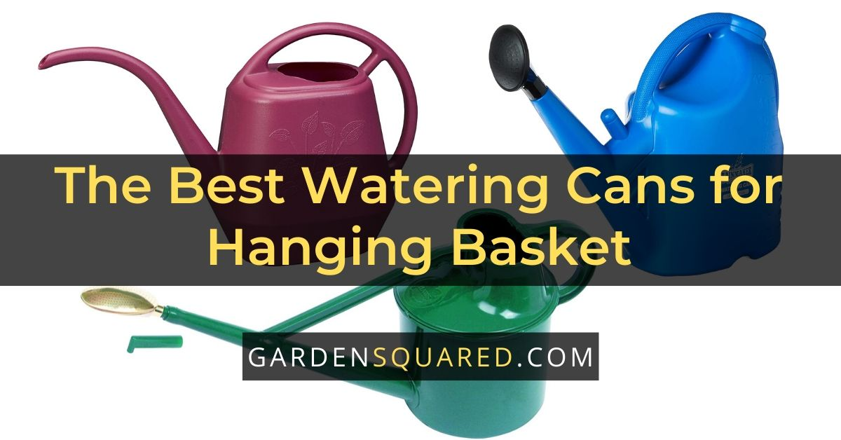 The Best Watering Cans for Hanging Basket