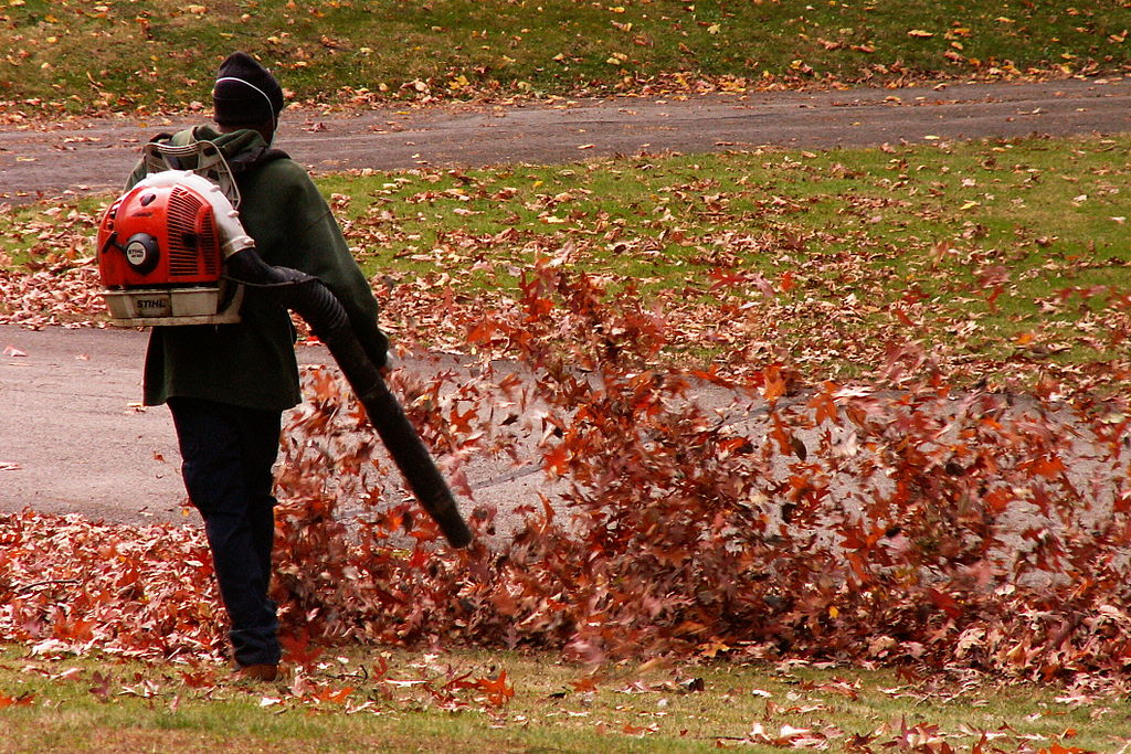man clearing autumn leaves using a backpack leaf blower