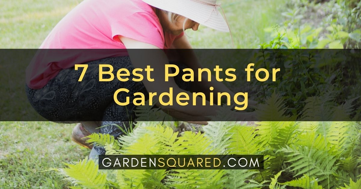 7 Best Pants For Gardening
