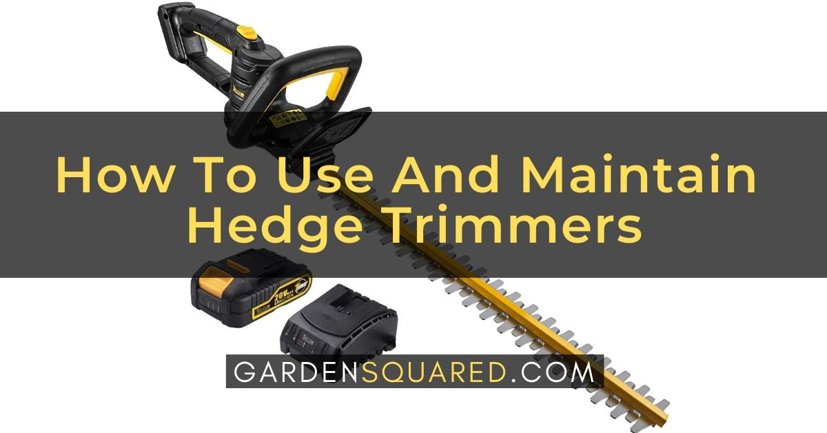 How To Use And Maintain A Hedge Trimmers