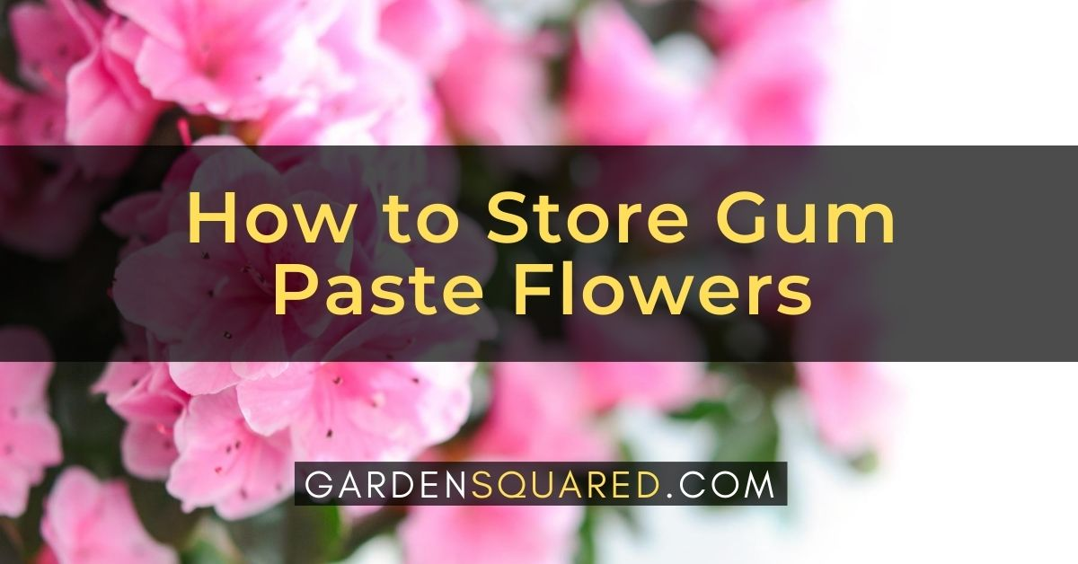 How To Store Gum Paste Flowers