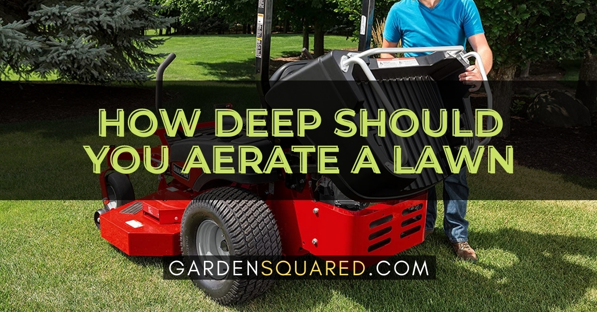 How Deep Should You Aerate A Lawn
