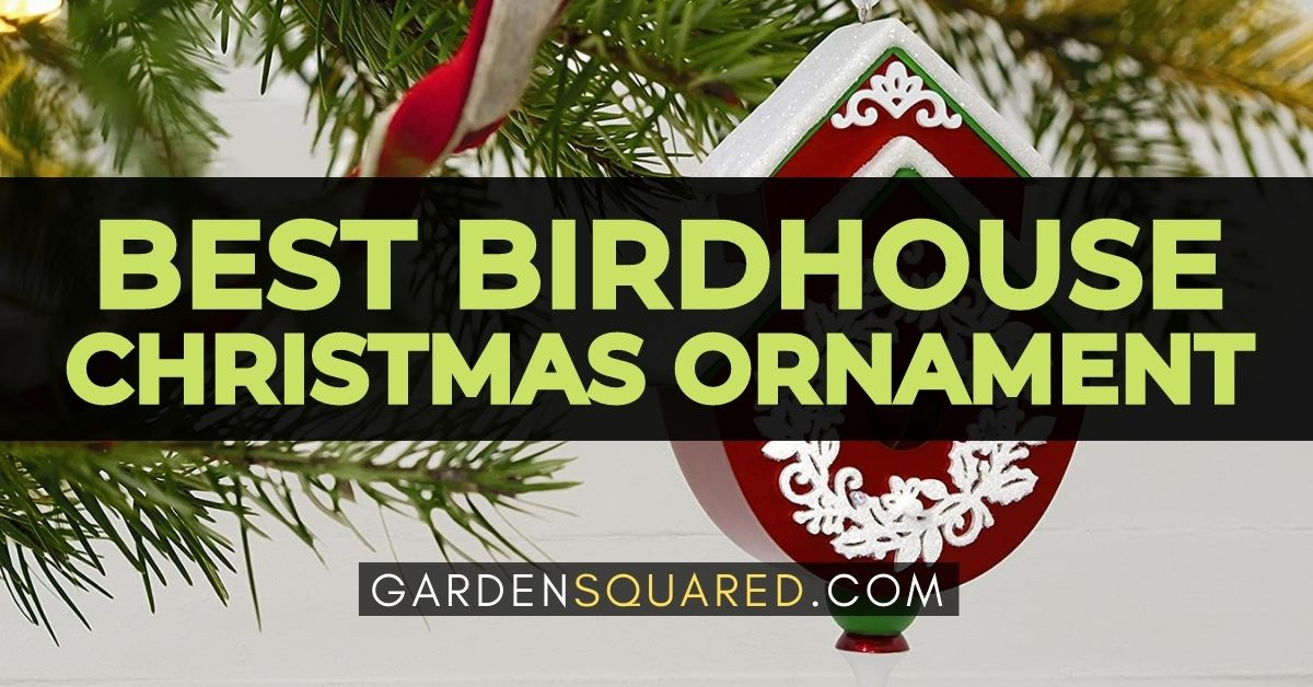The Best Birdhouse Christmas Ornament Review