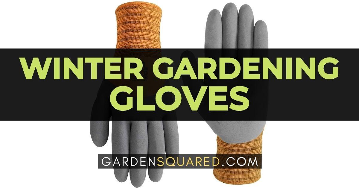 Best Winter Gardening Gloves