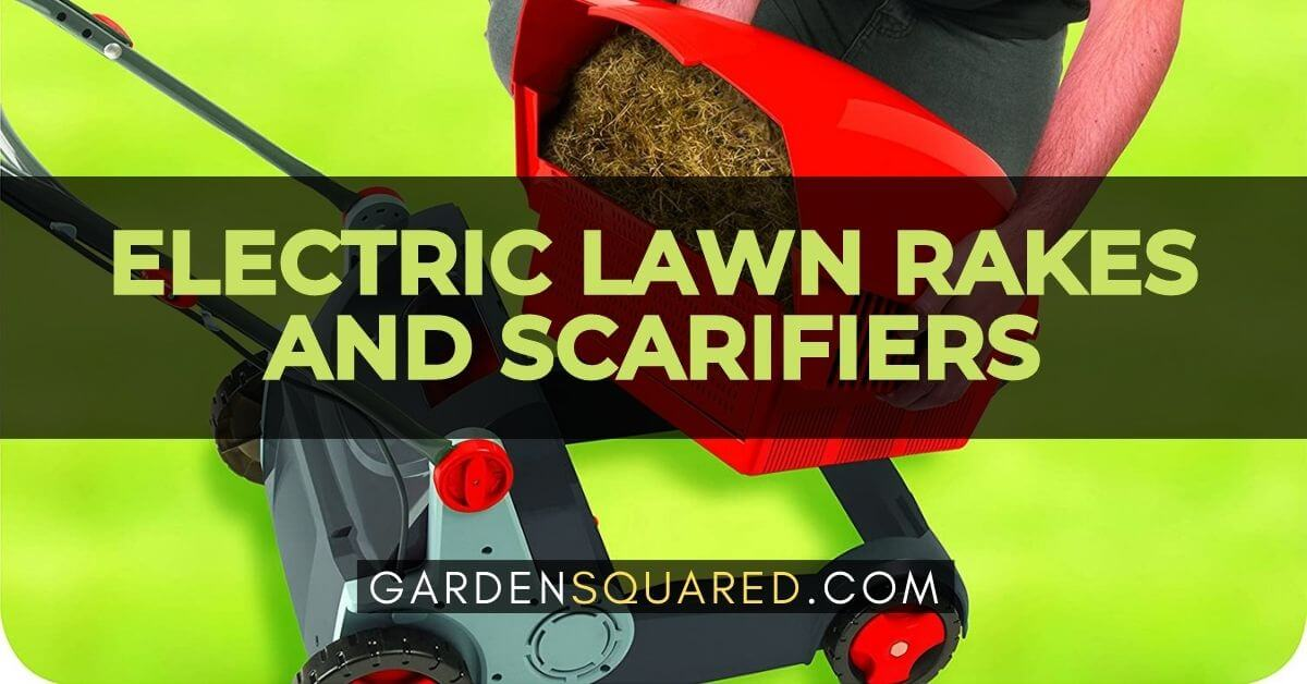 Best Electric Lawn Rakes And Scarifiers