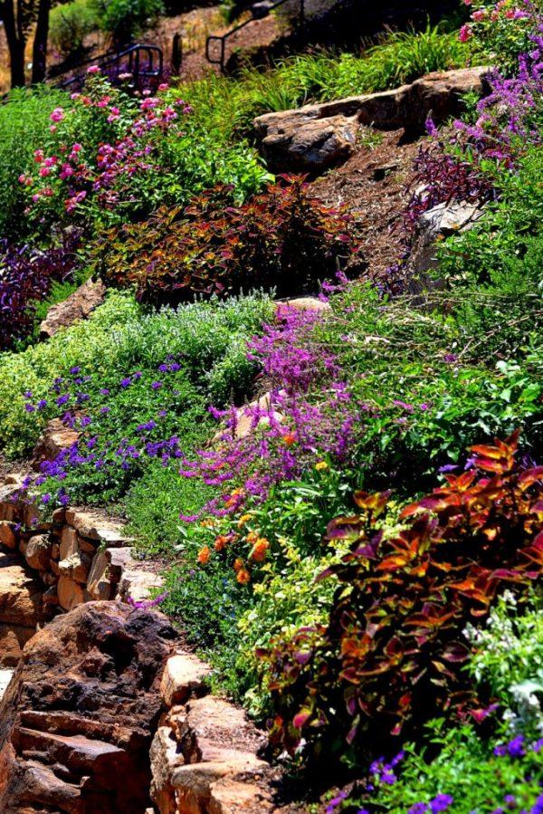 xeriscaping gardening water