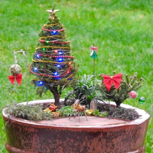 25 Christmas Tree Mini Landscaping Pictures And Ideas On Pro Landscape