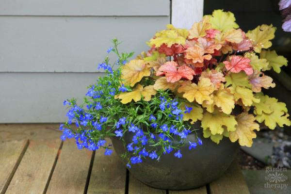 Decorative Ideas For Creating A Summer Container Garden Garden