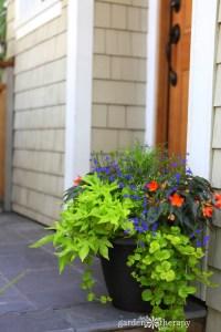 Decorative Ideas for Creating a Summer Container Garden ...