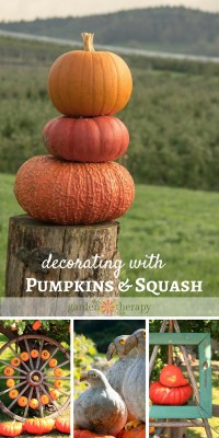 Quirky Outdoor Fall Decorating with Pumpkins and Squash ...