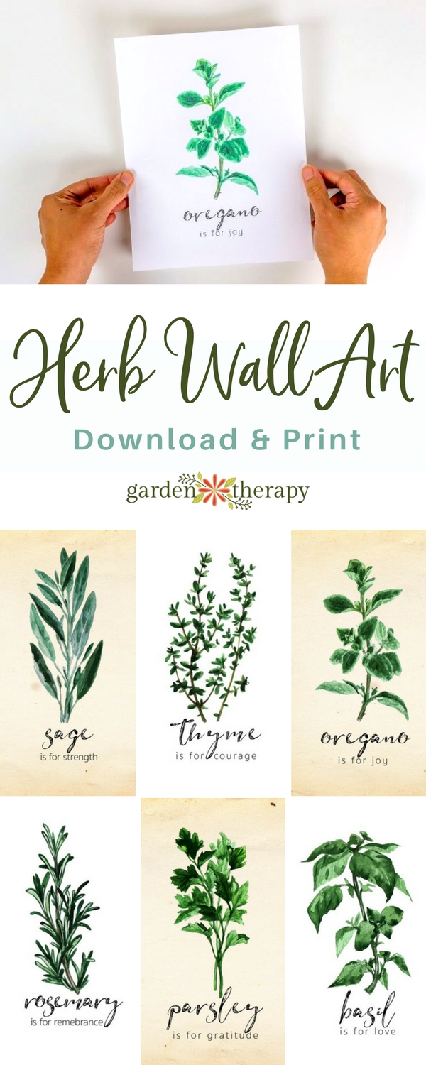 Discover the Beauty and Meaning of Different Herbs with ...