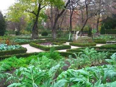 Royal Botanical Garden, Madrid