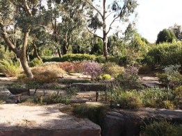Australian Garden, Cranbourne