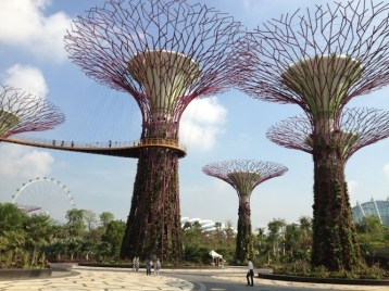 Super Trees at Gardens By the Bay
