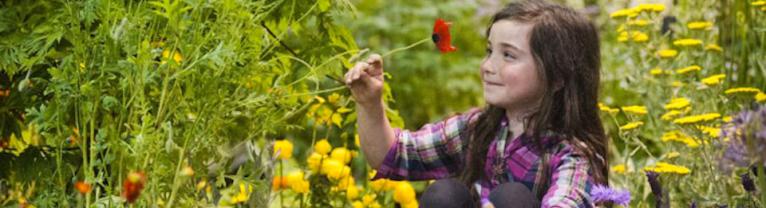 Gardening Scotland slider
