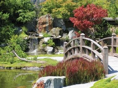 JAP_garden