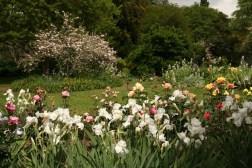 L-hirondelle garden