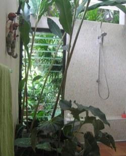 Tabu indoor-outdoor bathroom