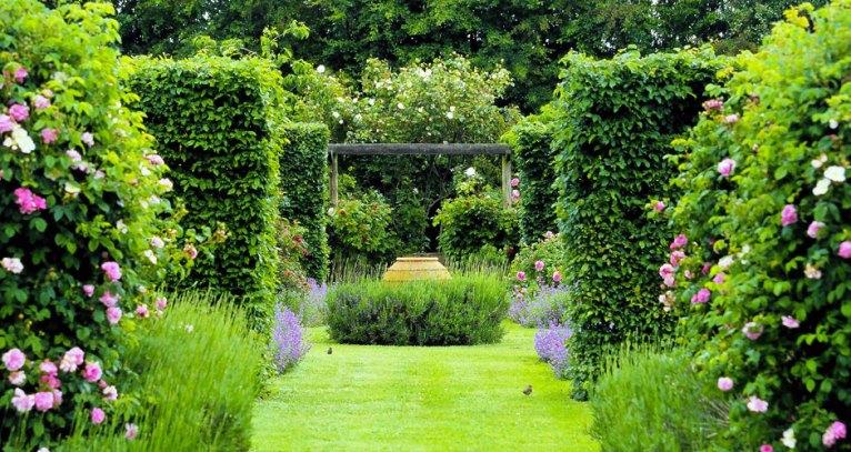 Garden at Tudor Park