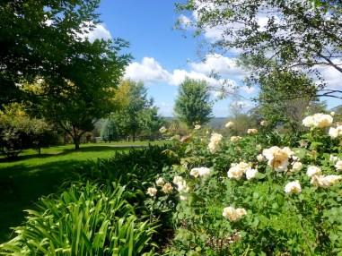 Spinning Hill Farm open garden Bundanoon