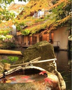 Hotel Chinzanso Tokyo autumn:fall