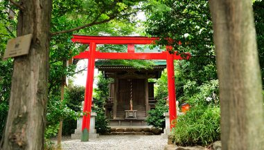 Hotel Chinzanso Tokyo red torii gate of the Shiratama Inari Shrine
