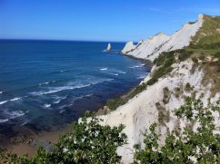 Explore the beach at nearby Cape Kidnappers