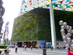 Greenwall in Raffles Place, Singapore CBD. Photo Helen Young