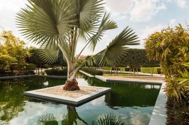 UAE Dubai Private estate garden. Design Kamelia Zall for Al Barari