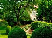 Clos de Villeneuve, Valensole, Provence, France - by K Hellstrom