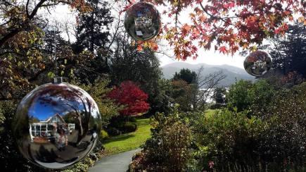 Glenfalloch Woodland Garden