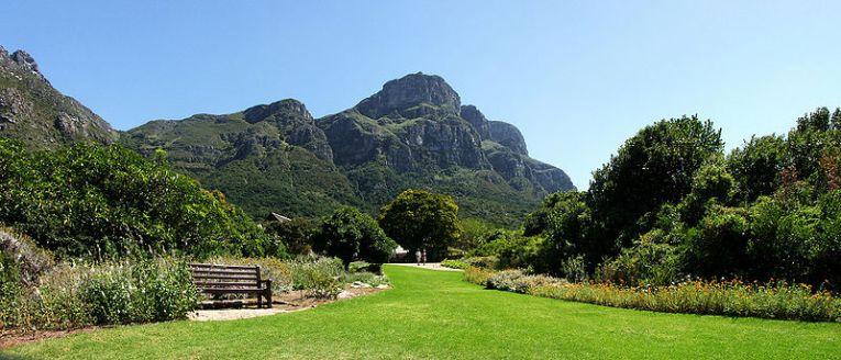 Kirstenbosch Botanical Gardens South Africa