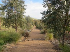 Path through the new Southern Tablelands Ecosystem Park in the National Arboretum Canberra ACT. Photo Gerry Mackie