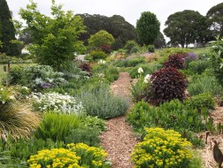 Hillandale Garden and Nursery, Central West NSW