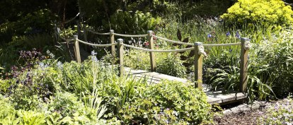 Judith Quérée's Garden - Set into the side of a valley in the rural parish of St Ouen, Judith Quérée's Garden contains over 2,500 plants. © Danny Evans http://media.jersey.com