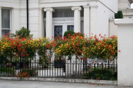 London flower box gardens