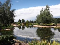 Mayfield Water Garden, Oberon, NSW
